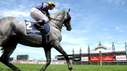 1x GA Victoria Derby Day Ticket - Priced to sell! Camden Park West Torrens Area Preview