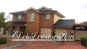 Roof painting driveway painting & Gutter installation Blacktown Blacktown Area Preview