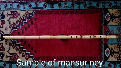TURKISH MADE PROFESSIONAL WOODWIND NAY NEY NEW + HARD CARRYING