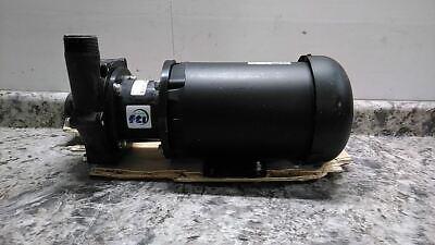 Finish Thompson Db10v-t-m207 1-12 Hp 208-230460v Magnetic Drive Pump C