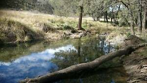 HUNTING Property 4 Sale.  960 ACRES with income. 5 hours Sydney, Halls Creek Tamworth Surrounds Preview