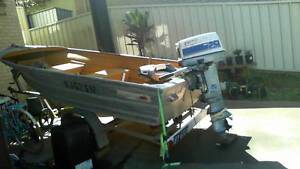 4m Tinnie with 25HP Evinrude Coffs Harbour Coffs Harbour City Preview