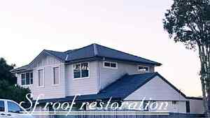 Roof driveway painting & cleaning ■ ■ Gutter installation Campbelltown Campbelltown Area Preview