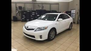 CAMRY HYBRID FOR UBER OLA RENTAL Campsie Canterbury Area Preview
