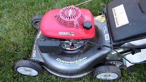 Honda engine mower