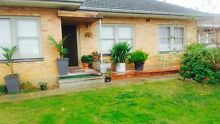 3 BEDROOM HOUSE FOR RENT CHEAP RATE! ONLY $285 PER WEEK Melrose Park Mitcham Area Preview