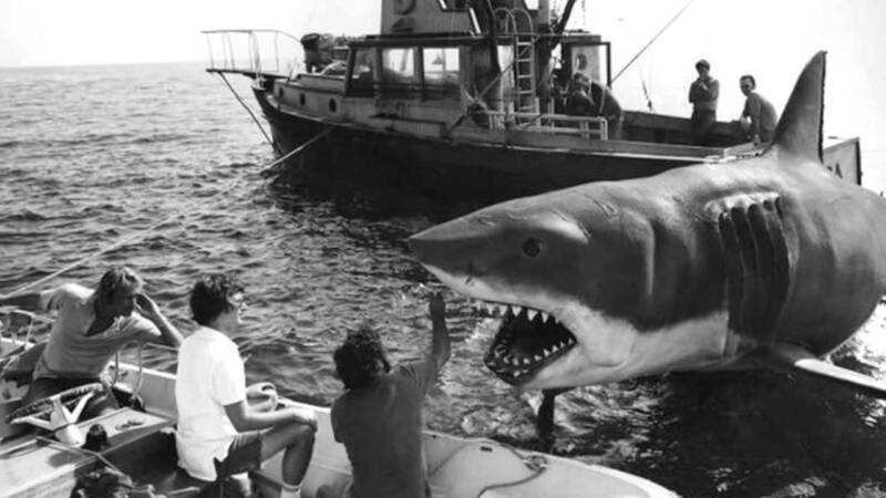 Jaws Movie Great White Sahrk 1975 8x10 Photo Print