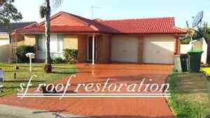 Roof driveway painting Casula Liverpool Area Preview