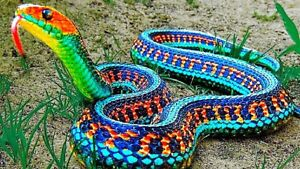 Looking to save any unwanted snakes
