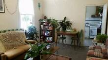 Room available in lovely Carlton North terrace house Carlton North Melbourne City Preview
