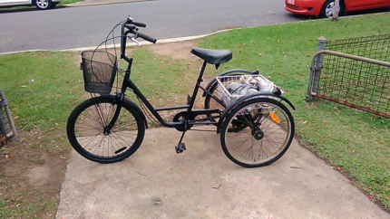 Gomier Adults Tricycle