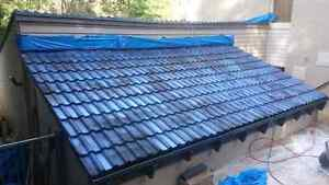 roof painting Strathfield Strathfield Area Preview