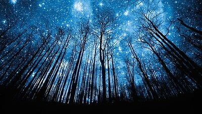 Starry Night Sky Wall Art Canvas Picture 20x30Inch