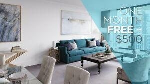 Halifax Apartments - One Bedroom - Scotia Tower Apartment for...