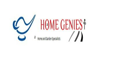Home Genies