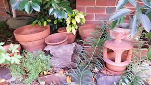 Terracotta, glazed & bonsai plant pots Box Hill Whitehorse Area Preview