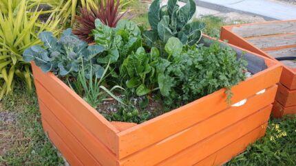 Raised Garden Beds - CHEAP GARDEN OPTION Walker Flat Mid Murray Preview