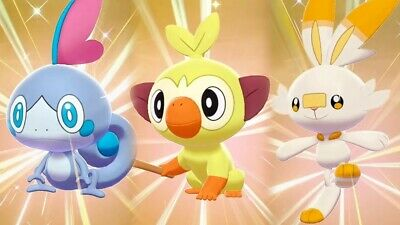 All Starters Shiny 6IV Holding Master Balls Good Nature Pokemon Sword and Shield New Master Well