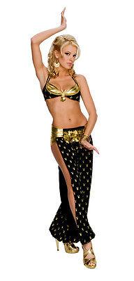 PLAYBOY HAREM GIRL Costume Lady Genie Belly Dancer - Genie Girl Kostüm