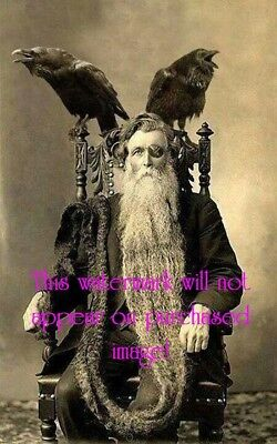 Old VINTAGE Antique STRANGE CREEPY Bearded Man with WRENS Photo Reprint