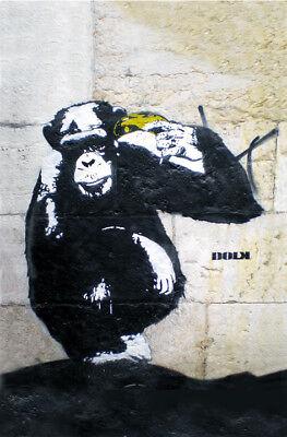 DOLK-Monkey Zooicide- Graffiti street art