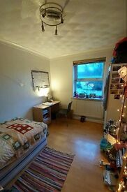 Spacious and cozy single room in very central location - very economic