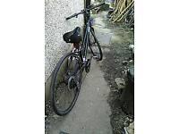Ladies Bike .specialized Vita