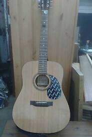Harley Benton Guitar
