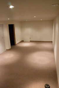 STUDENTS! CLEAN AND COZY DOWNTOWN 1-BED BASEMENT IN CENTURY HOME