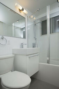 IDEAL downtown Modern and renovated Plateau MCGILL! 3 1/2 3.5