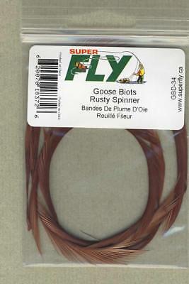 rusty spinner     TBQ-06 Turkey biots