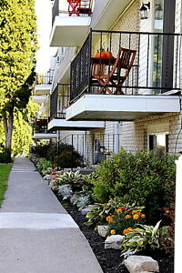 1 BR 1BA REMODEL/NO SMOKING/INCLUSIVE Avail July 1st $925.00