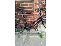 His n hers raleigh bikes