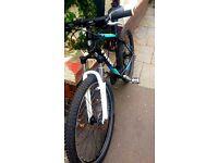 Trek 3500 Disc Mountain Bike