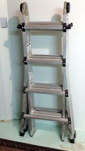 Cosco Step extension ladder