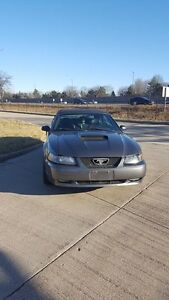 2004 Ford Mustang GT Convertible *REDUCED FOR QUICK SALE**