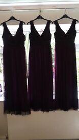 Debute Bridesmaid Dresses / Occassion Wear