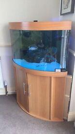 Jewel Corner Aquarium