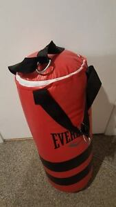 70lb Everlast Boxing Heavy Bag With Gloves