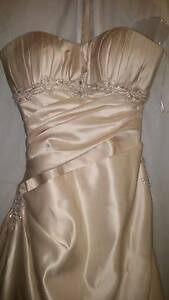 Champagne Ella Rosa Dress