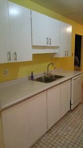 Kitchen Countertop, Cabinets, Sink & Faucet