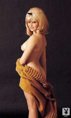 Best of 60's Vintage Pin-up Models / 5 Metallic Finish 8x10 Photo Prints Nr