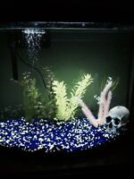 26 gallon fish tank with filter