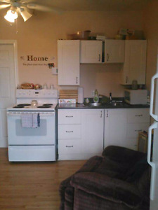 Single Bedroom apartment in Enfield / Elmsdale area