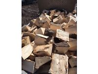 Special offer soft wood logs £50 per potato box