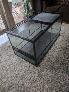 Large Terrarium with Thermostat and Heat Mat