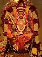 Indian Famous Astrologer & Pam Reader Psndit Ram 4388792133