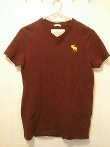 Abercrombie, Hollister, Mexx & Le Chateau S/M men's shirts!!