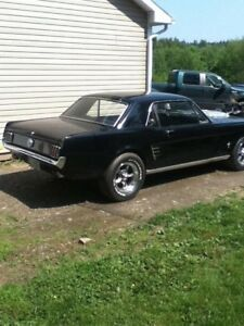 1966 mustang coupe project car