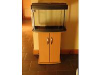 45L Aquarium / Fish tank including stand and Eheim pro filter.